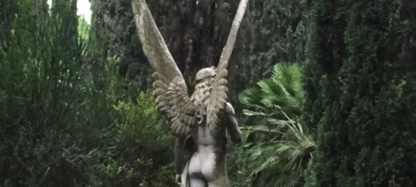Angeli di roma